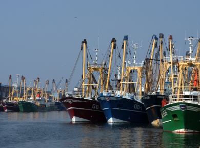 fishing fleet tracking